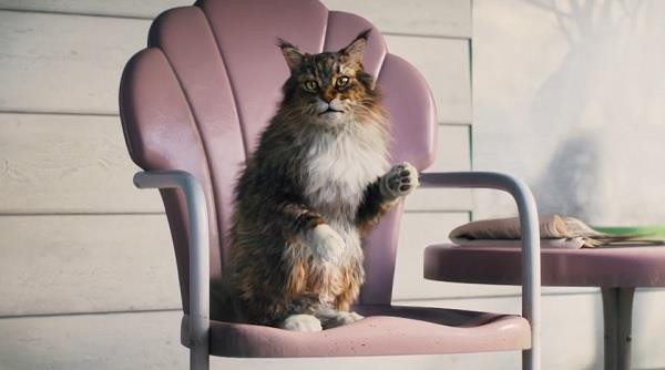 Cat's Pride Litter for Good™