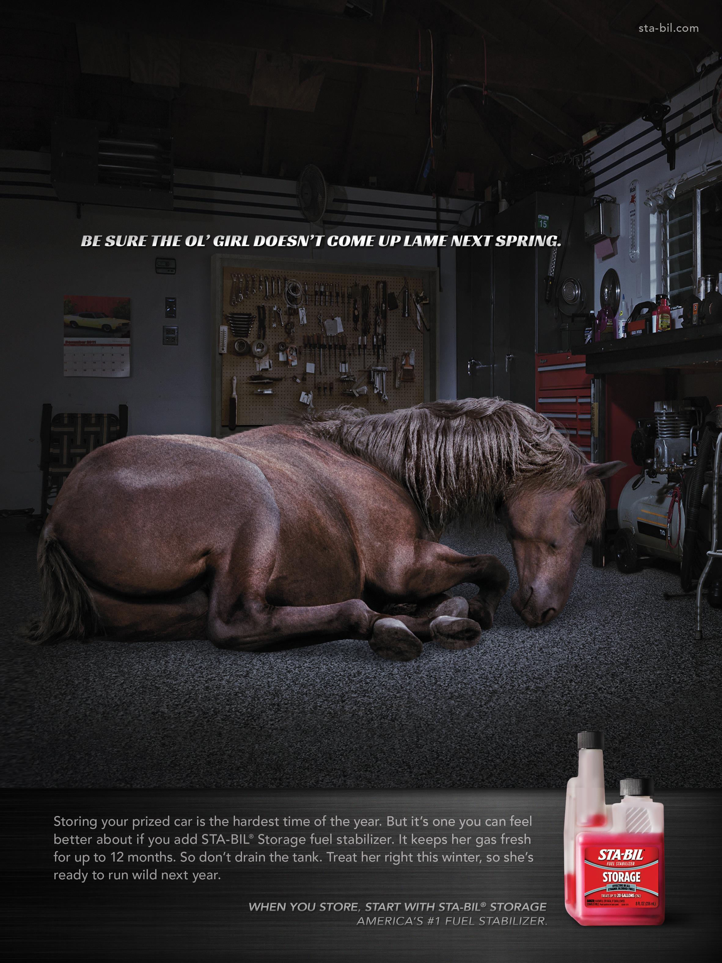 STA-BIL: Hibernation/Horse