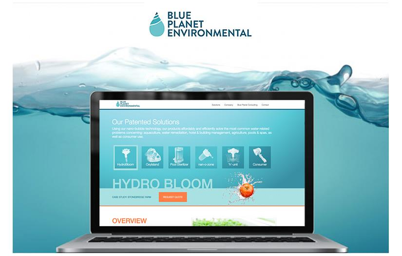 Blue Planet Environmental