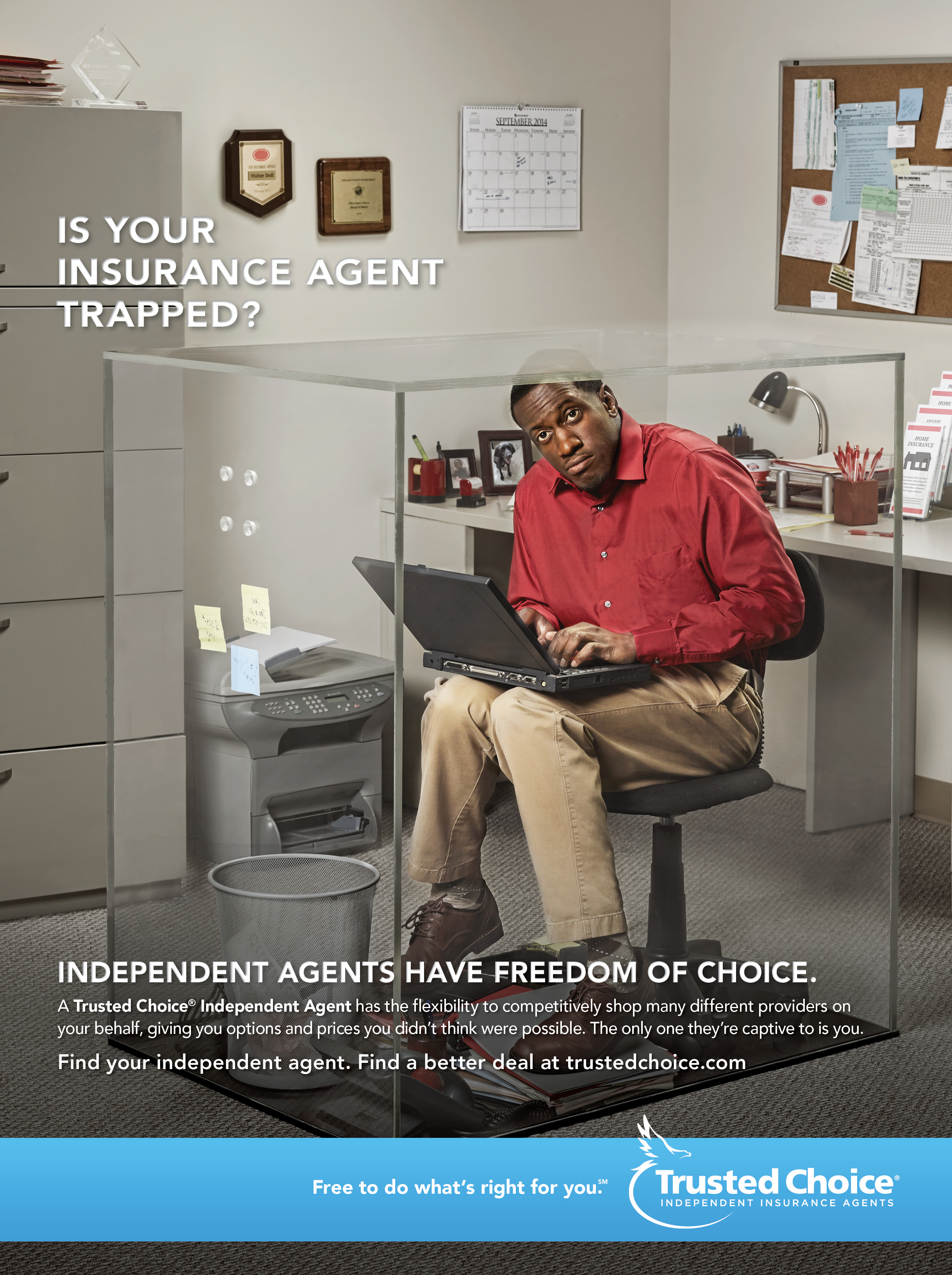 Trusted Choice: Freedom of Choice/Box