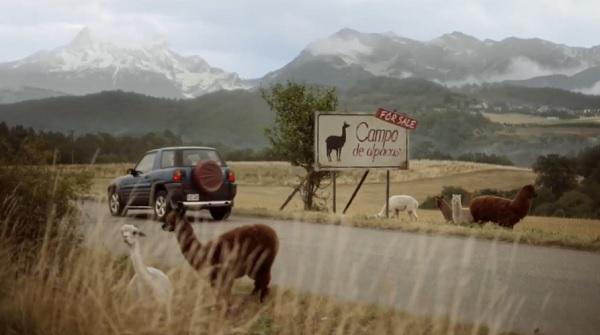 Samsung: Alpaca