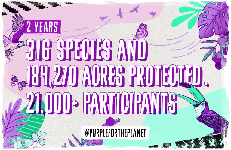 Going #PurpleForThePlanet for 2019 | The Many