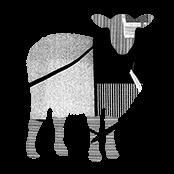 The Black Sheep Agency